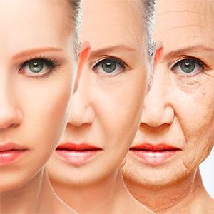 Facial Aesthetics Module
